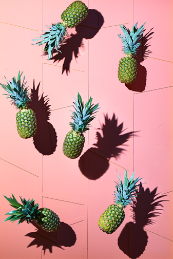 http://colleendurkin.com/files/gimgs/24_colleen-durkin-photography-chicago-saguaro-hotel-palm-springs-pineapples-on-wall.jpg