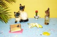24_colleen-durkin-photography-still-life-color-banana-morning-still-life-cats-gators.jpg