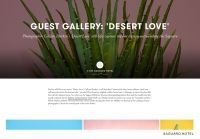 9_colleen-durkin-photography-saguaro-hotel-palm-springs-cactus-feature-1.jpg