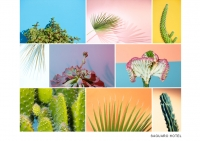 9_colleen-durkin-photography-saguaro-hotel-palm-springs-cactus-feature-4_v2.jpg